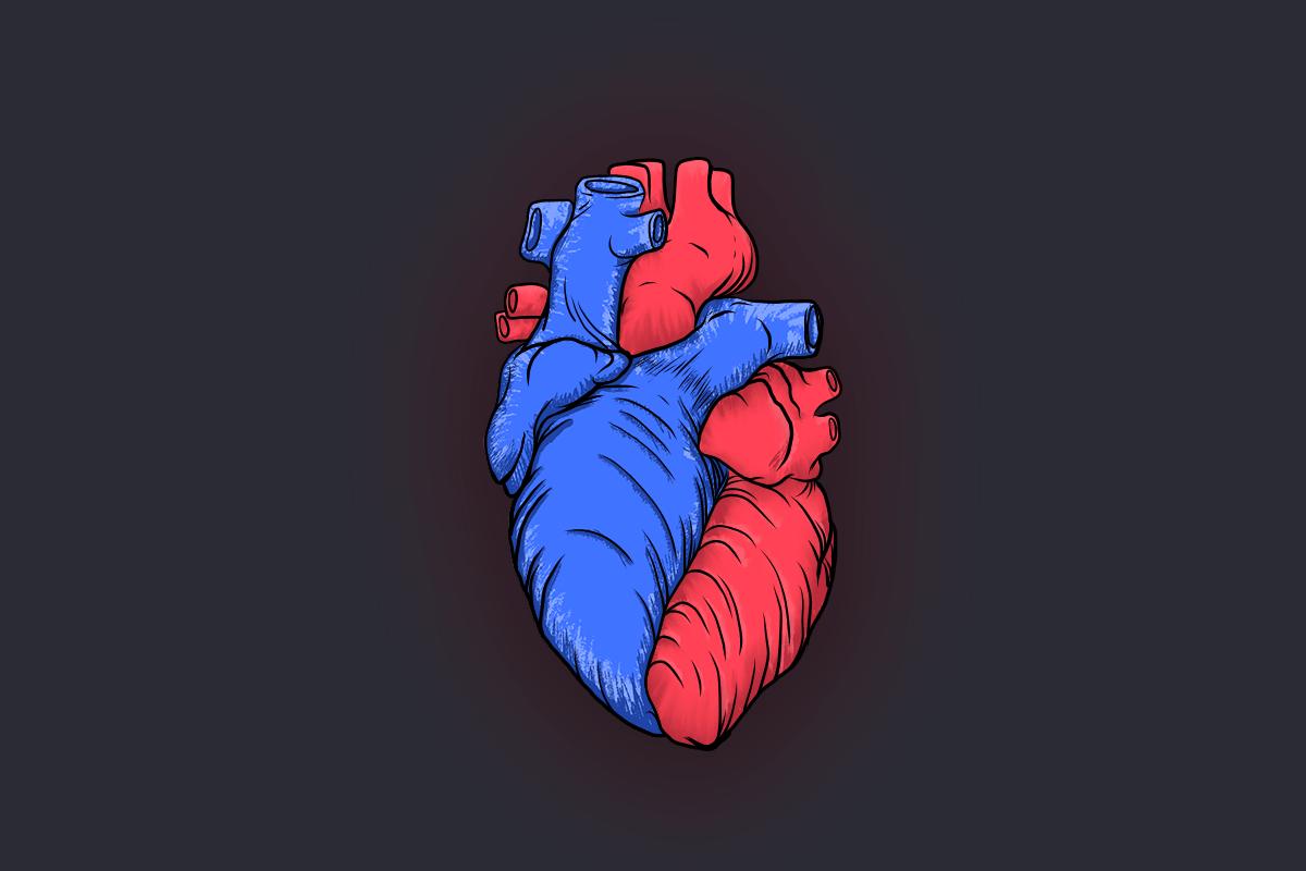 ilustracja serca